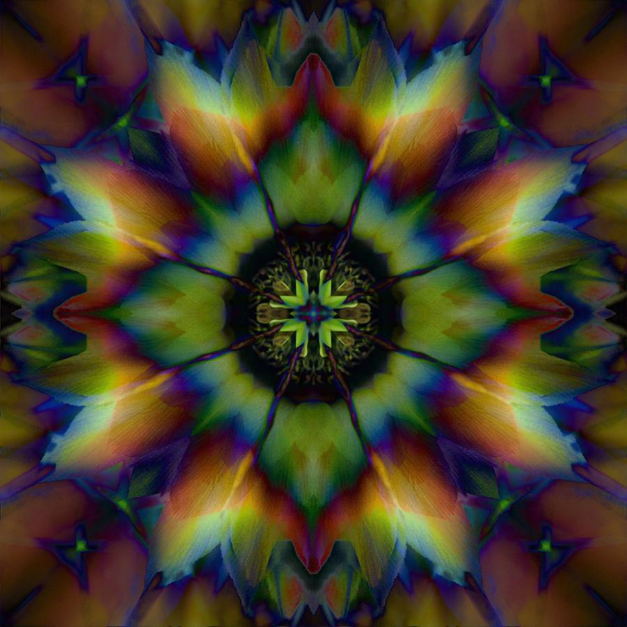 mandala  flower photography Janet Towbin