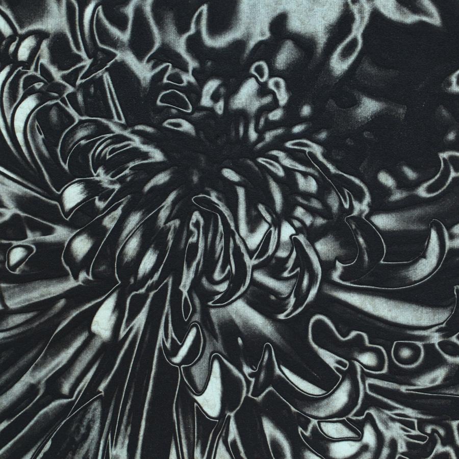 Solar Mum chine-collé (aqua) by Janet Towbin