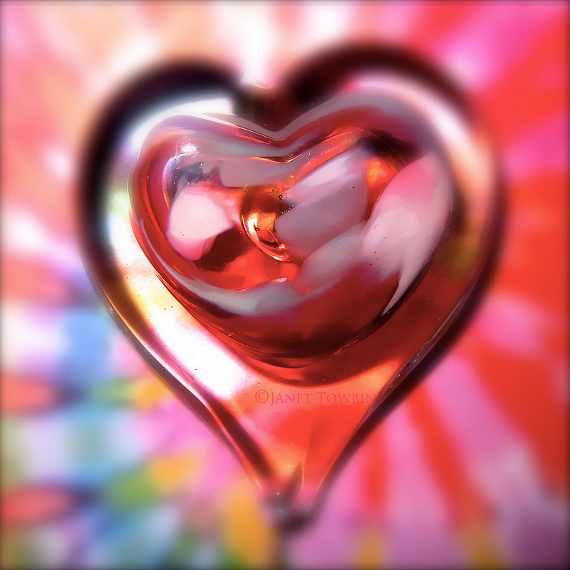 Love in the Abstract by Janet Towbin
