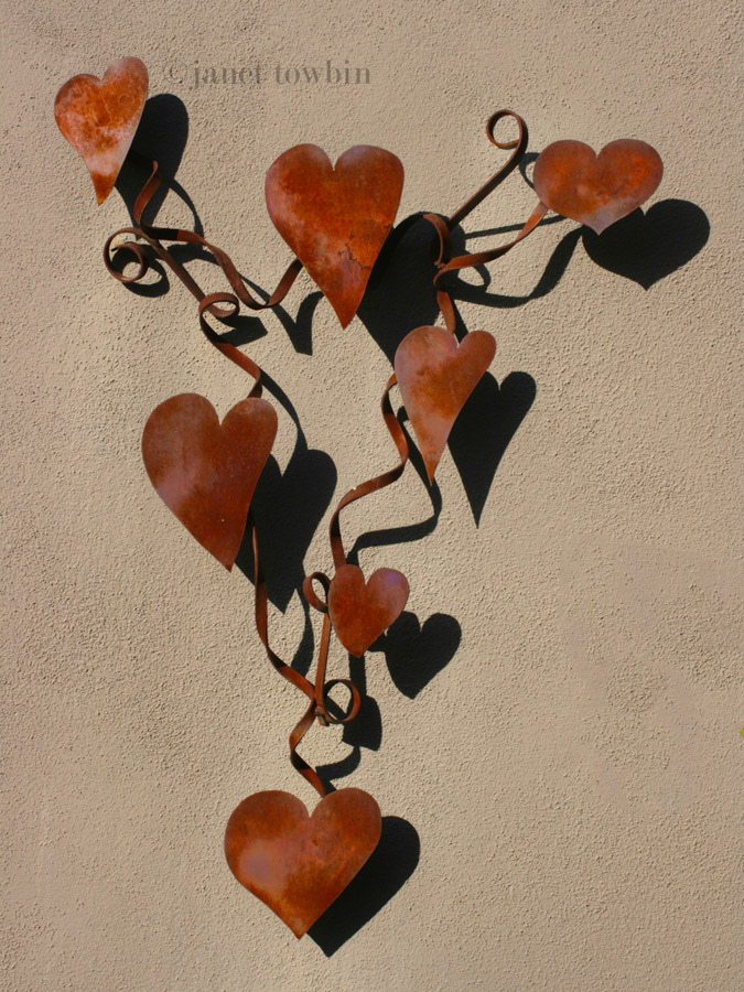Shadows from the Heart by Janet Towbin