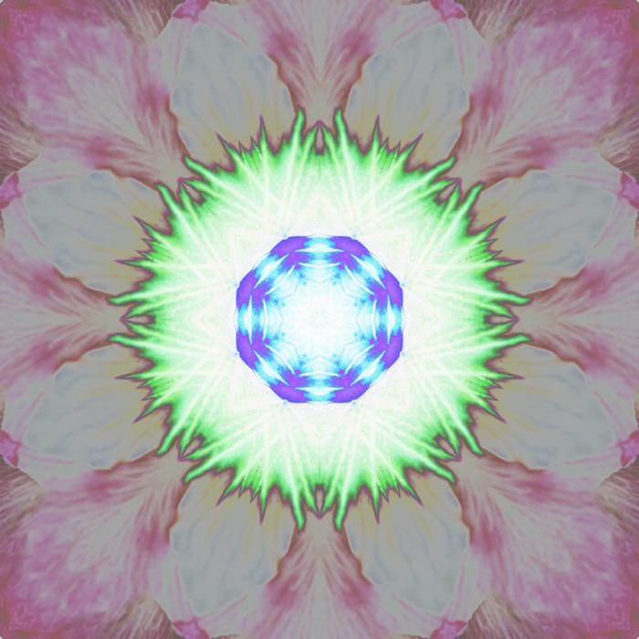 Pansy Mandala Inverted by Janet Towbin