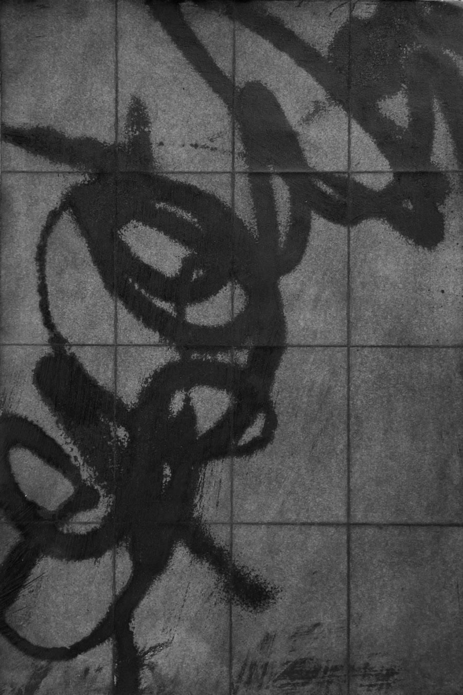 Urban Scrawl by Janet Towbin